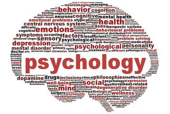 AP Psychology Development Crossword Puzzle Answer Key
