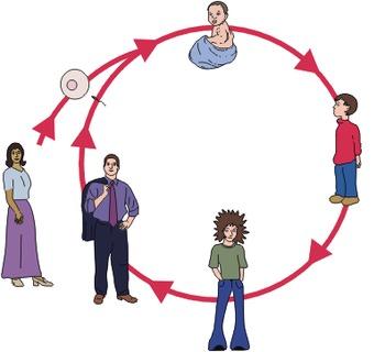 AP Psychology: Developmental - Prenatal Development and the Newborn