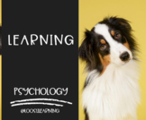 AP Psychology | Learning PowerPoint *Editable *Block Schedule