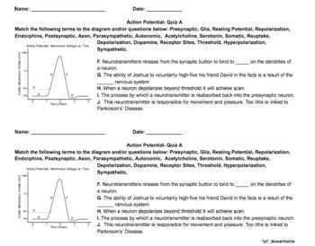 AP Psychology Neuron Quizzes