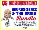 AP Psychology Neuroscience Brain Biological Bases Powerpoint & Activity BUNDLE