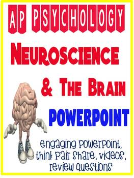 AP Psychology Neuroscience Brain Biological Bases Powerpoint Engaging Activities