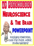 AP Psychology Neuroscience Brain Biological Bases Powerpoint Engaging Activities