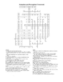 AP Psychology Sensation and Perception Crossword Puzzle
