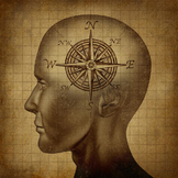 AP Psychology Social Psychology Attribution - Cogntive Dis