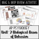 AP Psychology Unit 2 Biological Bases Drag & Drop Review A