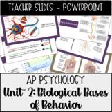 AP Psychology, Unit 2: Biological Bases Powerpoint Present