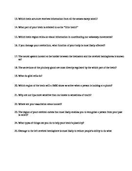 AP Psychology Unit 3 Biological Bases of Behavior Review