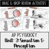 AP Psychology Unit 3 Sensation & Perception Drag & Drop Re