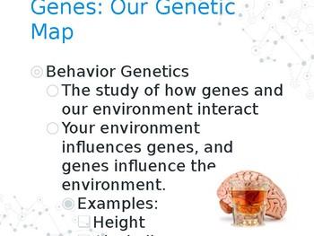 AP Psychology or Psychology Behavior Genetics PPT Slide Show