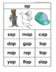 AP Rhyming Word Family Matching, Sorting, Writing, and Reading Activities