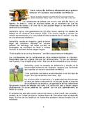 AP Spanish Belleza y Estética. Lectura Preguntas. Reading on Beauty & Aesthetics