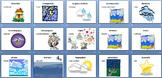 AP Spanish  Vocabulary PowerPoint:  El medio ambiente
