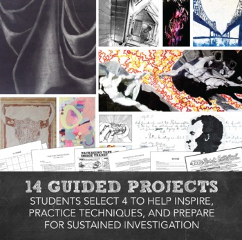 AP® Studio Art: Everything for Sustained Investigation, Selected Works AP® Art