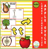 APPLE LIFE CYCLE  TEACHER CARDS
