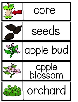 APPLE Word Cards {Capital & Lowercase}