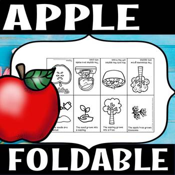 APPLES 8 page FOLDABLE