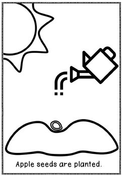 APPLES BIG BOOK(A4 SIZE)