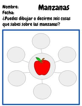 APPLES WORD WEB JOURNAL PAGE SPANISH ENGLISH BILINGUAL PRESCHOOL