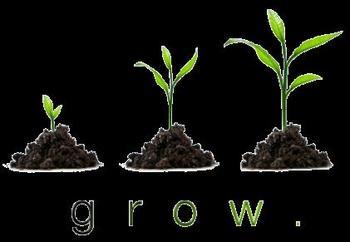 APUSH Free Response Question FRQ DBQ Student Feedback Form Glow Grow