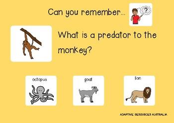 ARA: African Monkeys Adapted Book