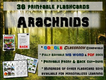 ARACHNIDS - 36 Printable front/back FLASHCARDS