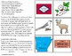 ARKANSAS State Symbols ADAPTED BOOK for Special Education