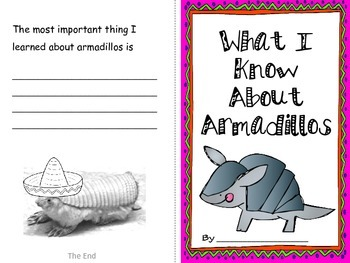 Armadillo Facts, Reading, Writing, and Craft