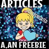 ARTICLES (A,AN)(FLASH FREEBIE)