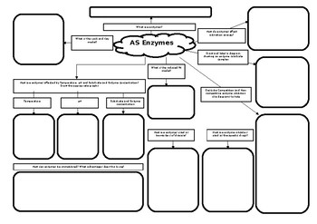 AS Biology Enzymes Revision Mat