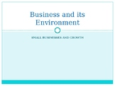 AS Level PPTs Business Studies, Small Businesses Growth (B