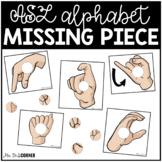 ASL Alphabet Missing Pieces Task Box | Task Boxes for Spec