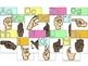 ASL Alphabet & Number Posters