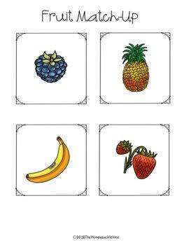 ASL Fruit File Folder Game