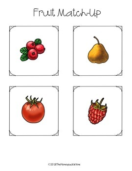 ASL Fruit File Folder Game Set 2