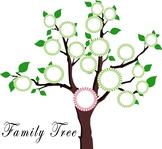 ASL II:  Family Tree Rubric