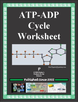 atp adp cycle worksheet by parker 39 s products for the sciences tpt. Black Bedroom Furniture Sets. Home Design Ideas