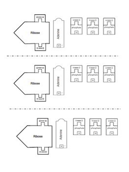 original-1223894-4 Questions Cut And Paste Worksheet on glue worksheets, three kings day worksheets, classification of objects worksheets, dot to dot worksheets, letter b worksheets, phonics worksheets, an and at word family worksheets, cutting worksheets, sequencing worksheets, uppercase worksheets, coloring worksheets, number 6 worksheets, fill in the blank worksheets, autumn worksheets, sorting worksheets, math worksheets, number 5 worksheets, halloween worksheets, least to greatest worksheets, small engine worksheets,