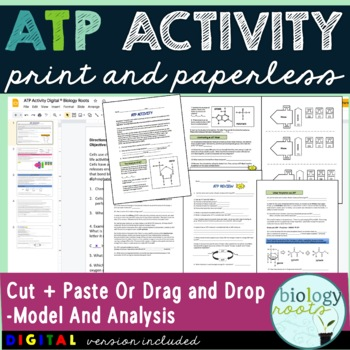 ATP Activity