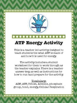 ATP Energy Activity
