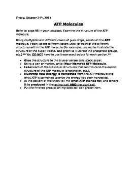 ATP Molecule & Cell Energy Mini-Lab