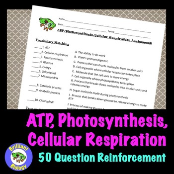 ATP, Photosynthesis, & Cellular Respiration Study Guide or