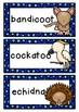 AUSTRALIAN ANIMALS  theme topic words WORD WALL vocabulary flash cards
