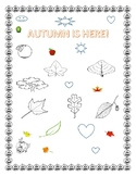 AUTUMN COLORING PAGE:       K-3