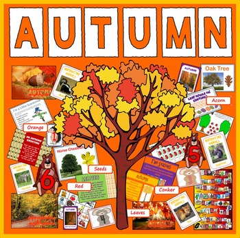 AUTUMN - SCIENCE ANIMALS EYFS KS1-2 SEASON WEATHER NOCTURNAL