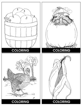 AUTUMN/THANKSGIVING (PICTURE & BLANK TASK CARDS) Gr. K-6