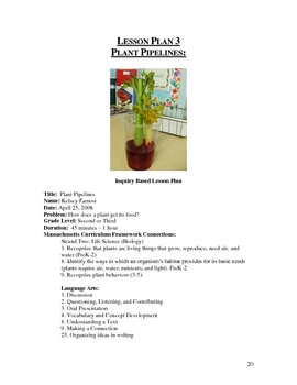 Abbreviated Plants Unit - Science