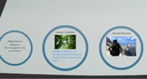 Abiotic & Biotic Factors (Prezi)