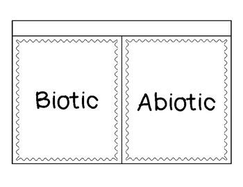 Abiotic and Biotic Sort