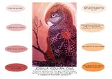 Art Lesson: Australian Aboriginal Art & History Activity #1